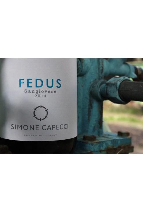 Azienda agricola Simone Capecci - Fedus