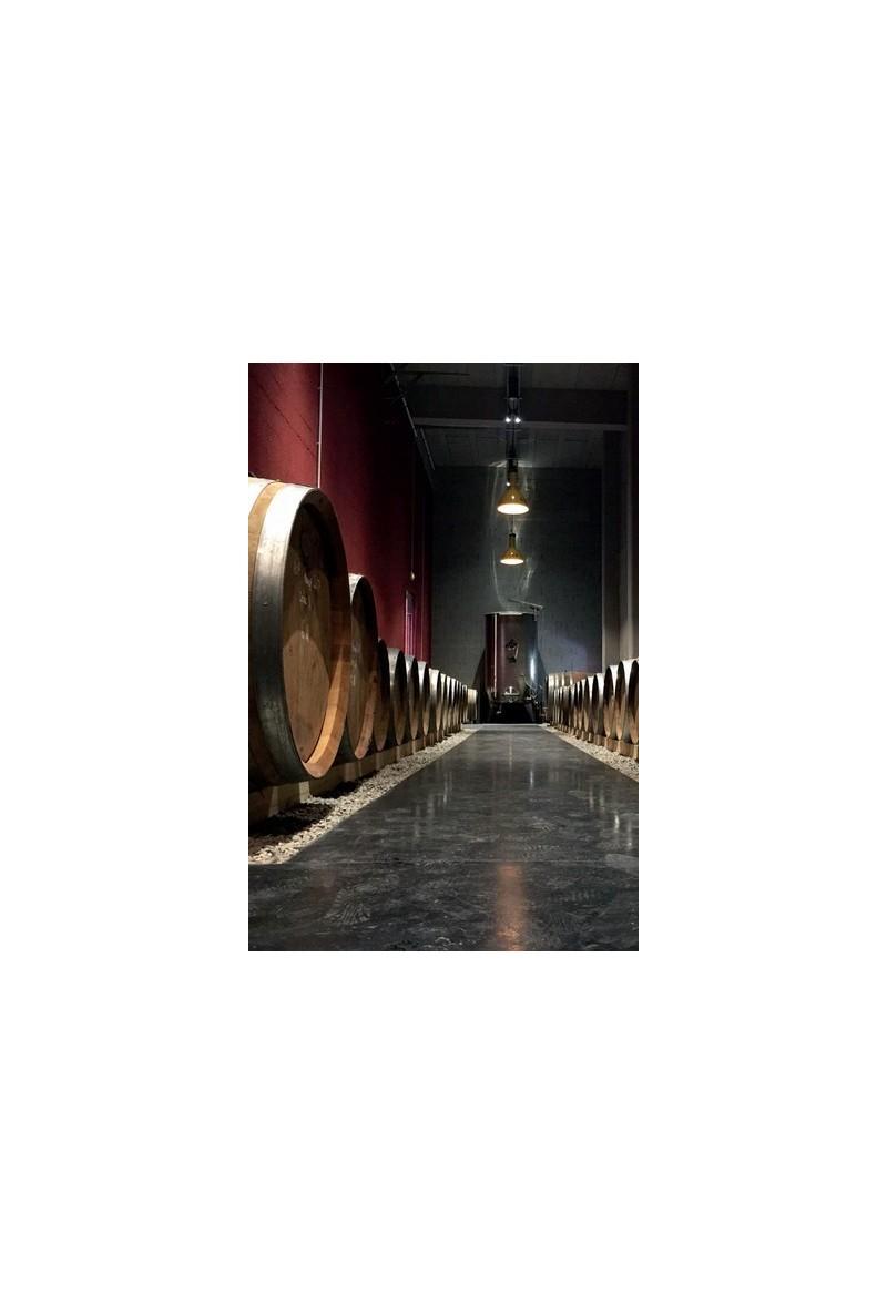 Domaine des Féraud - Côtes de Provence Indigène vieilles Syrah