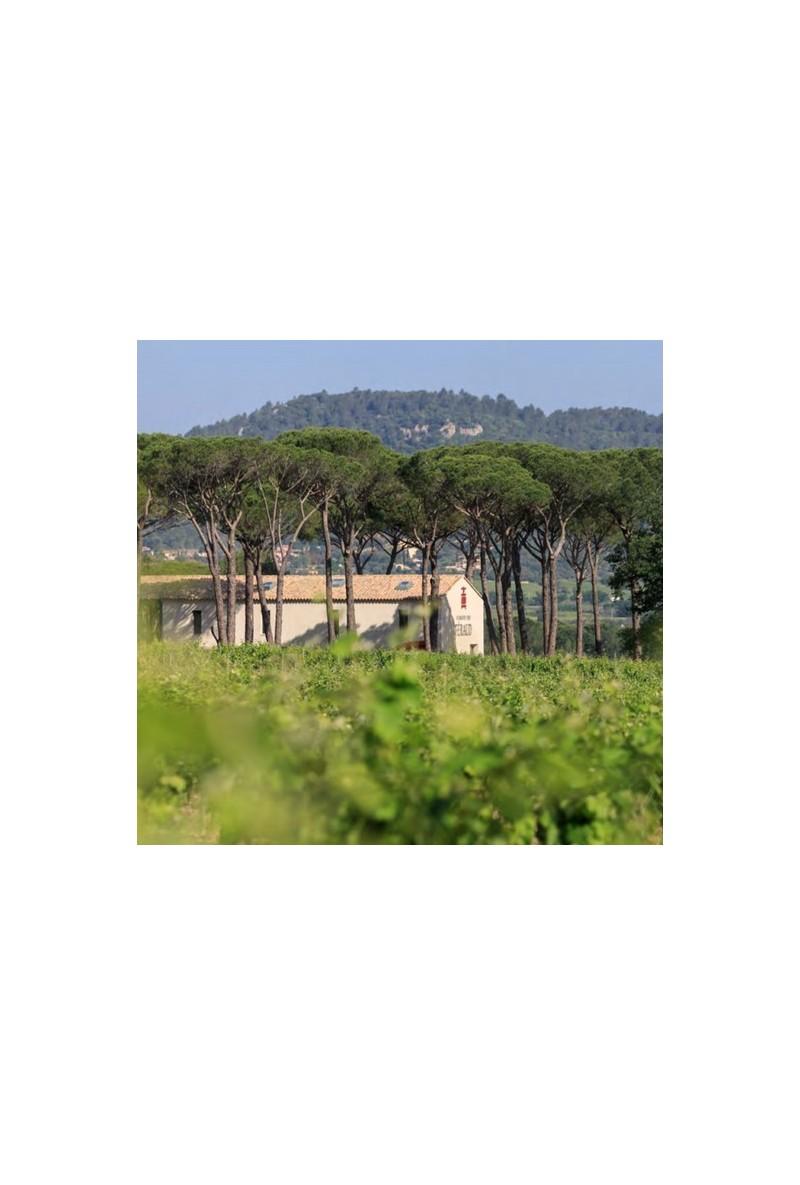 Domaine des Féraud - Côtes de Provence Nature rouge