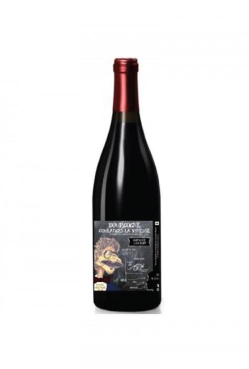 Domaine Maltoff - Bourgogne AOP Coulanges-la-vineuse