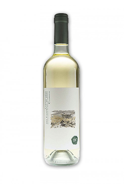 Cantina Offida - Verdicchio 2018